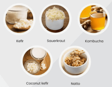 Probiotic food - 10 Nutritional Elements to Enhance Health That is Intellectual Insurance Coverage Cognition.